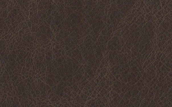 Buffalo Brunette Semi Aniline Leather