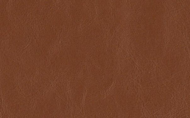 Buffalo Dusk Semi Aniline Leather