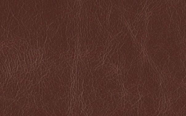 Buffalo Lionheart Semi Aniline Leather