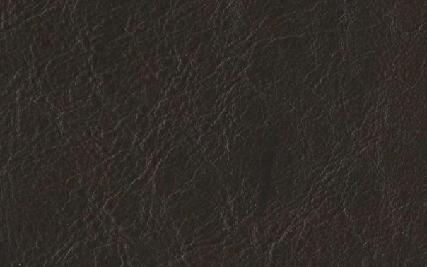 New Delhi Dark Chocolate Aniline Leather