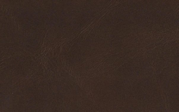 New Delhi Tan Aniline leather
