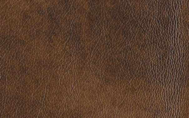Windsor Ash Semi Aniline Leather