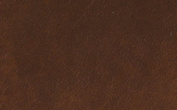 Windsor Chestnut Semi Aniline Leather